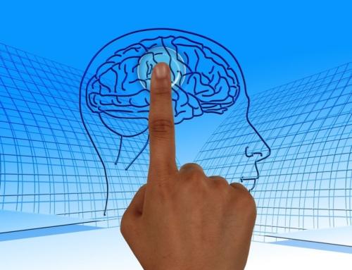 Kognitive Fähigkeit #10: Erinnerung